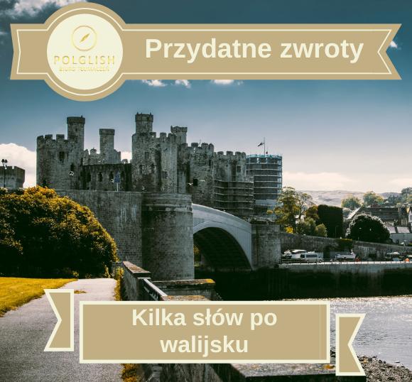 Przydatne zwroty: podstawowe słówka i zwroty po walijsku